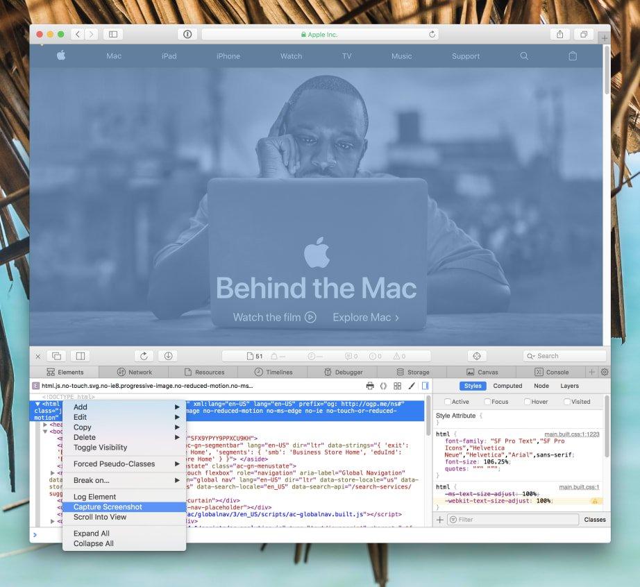 Demonstration of the Capture Screenshot feature in Safari
